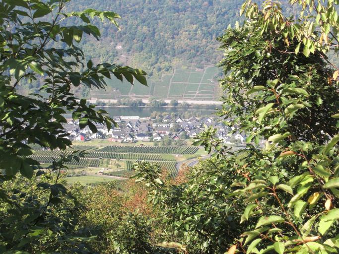 Pension Dören, Cochem-Zell