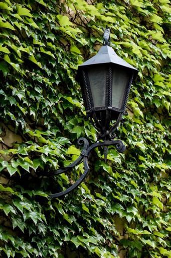 Tulip Inn Vienna Thueringer Hof, Wien