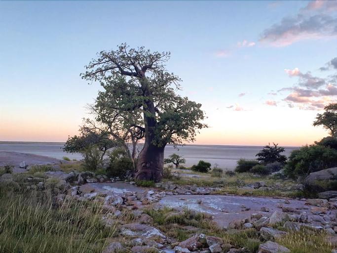 Makgadikgadi Adventure Camp, Tutume