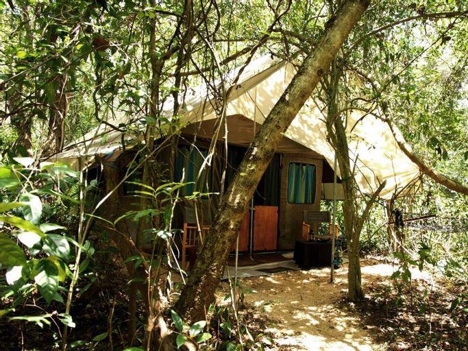 Mahoora Tented Safari Camp - Dambana, Mahiyanganaya
