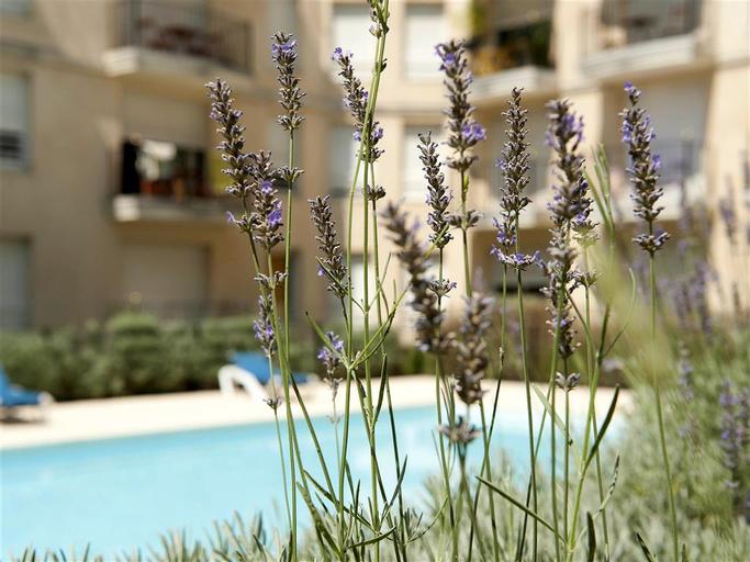 Aparthotel Adagio access Bordeaux Rodesse, Gironde