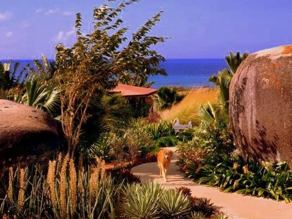 Blue Horizon Boutique Resort,