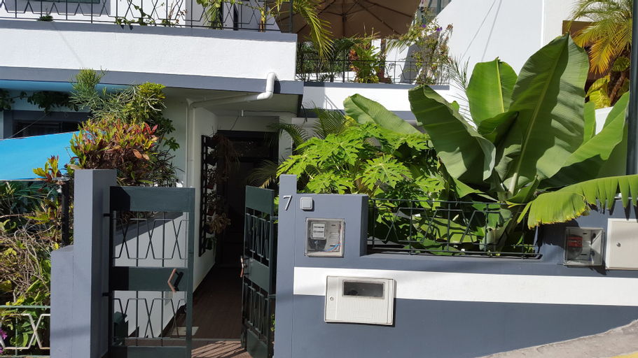 Light Breeze, Funchal