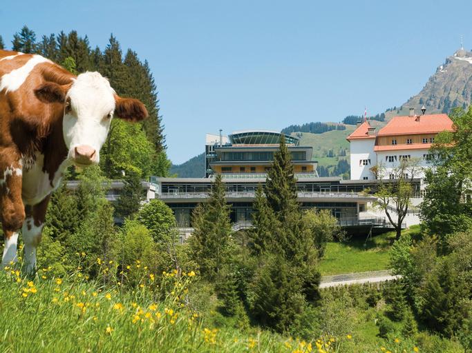 Austria Trend Hotel Schloss Lebenberg, Kitzbühel