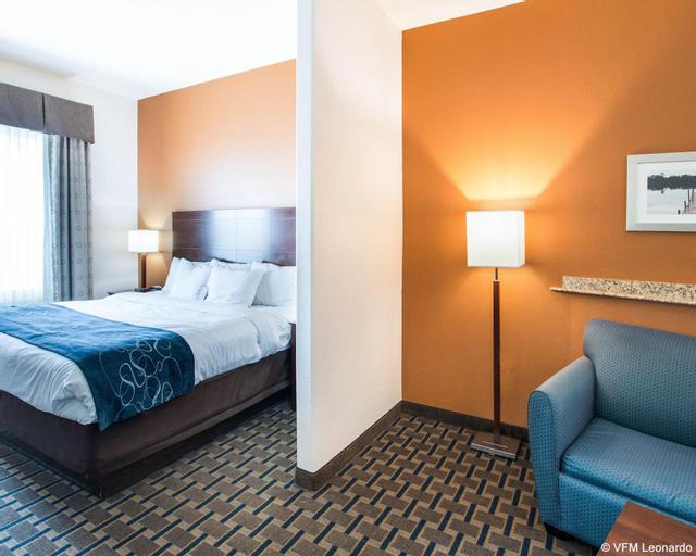 Comfort Suites Waxahachie - Dallas, Ellis