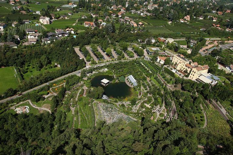 Alexander, Bolzano