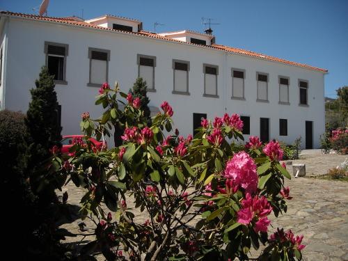 Villa Hostilina, Lamego