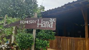 Homestay Hana, Bantul