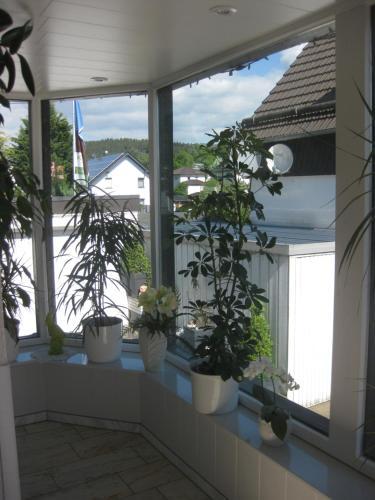 Pension Haus Schnittler, Hochsauerlandkreis