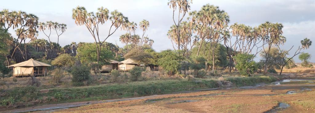 Ashnil Samburu Camp, Isiolo North