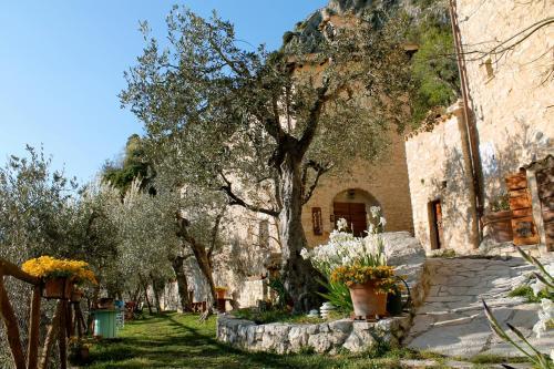 Guesthouse Runcini, Terni