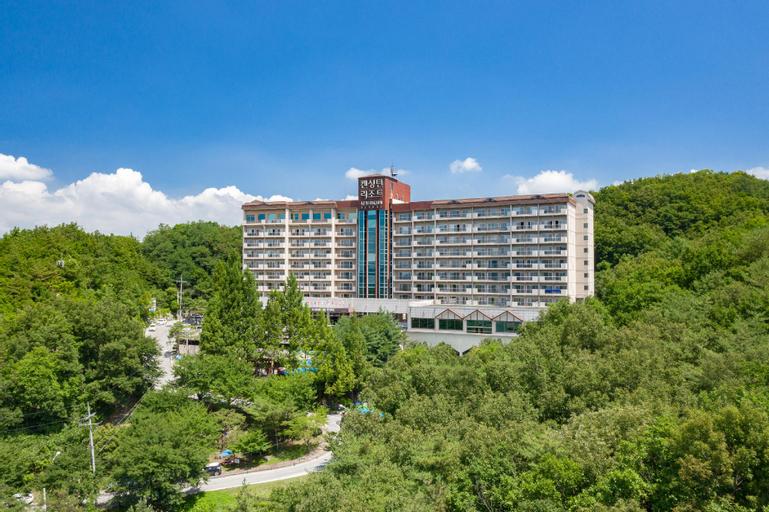 Kensington Resort Chungju, Chungju
