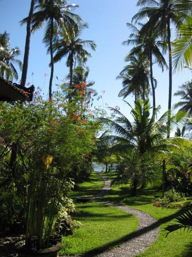 Bali Sandat, Buleleng