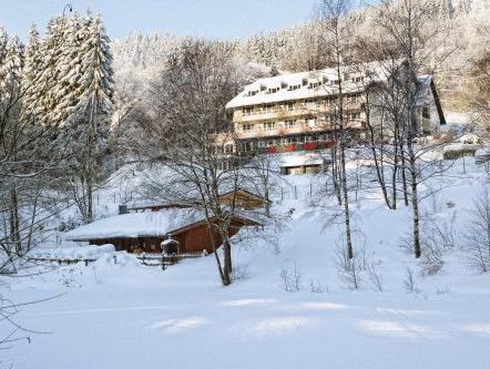 Waldhaus Am See, Waldeck-Frankenberg