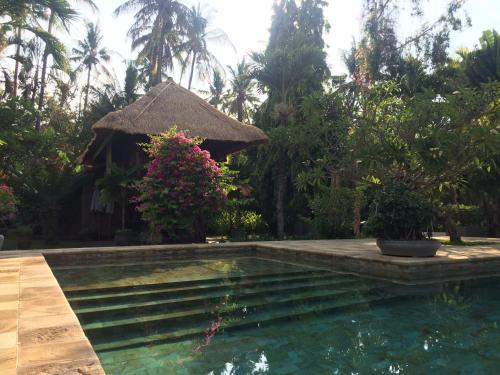 Singko - Singsasari Kokokan, Buleleng