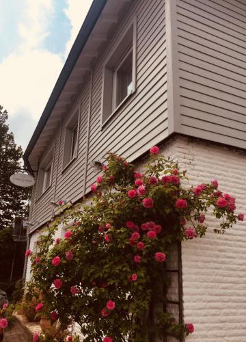 Landhaus Thome, Düren