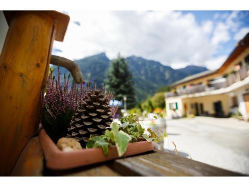 Agriturismo Miravalle, Bernina