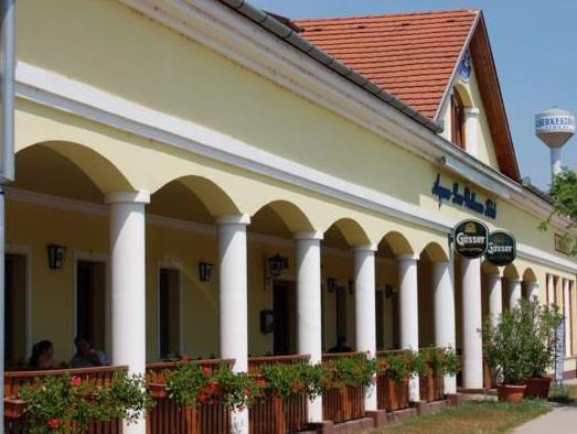 Aqua Lux Wellness Hotel, Kunszentmárton