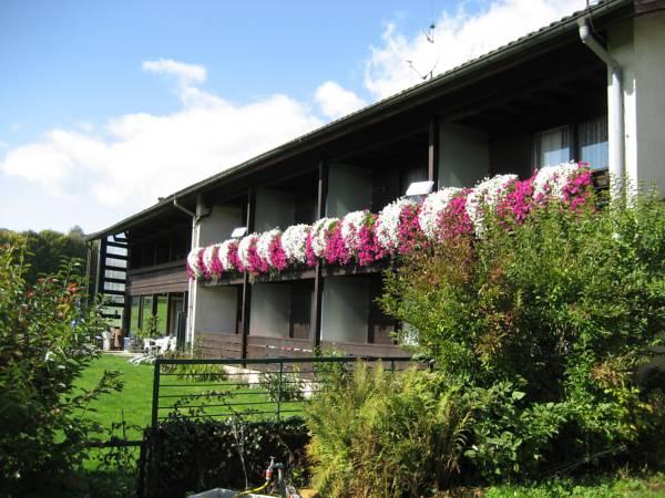 Pension Haus Hochstein, Regen