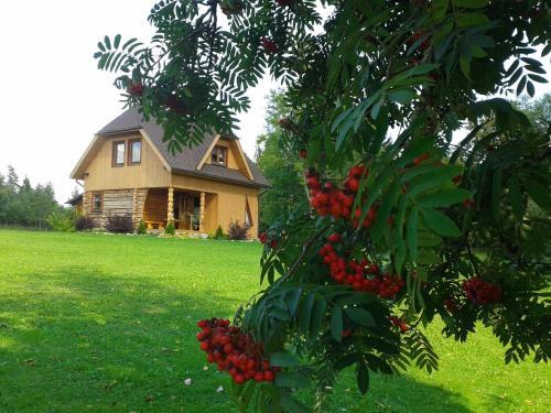 Trissalinas, Valka