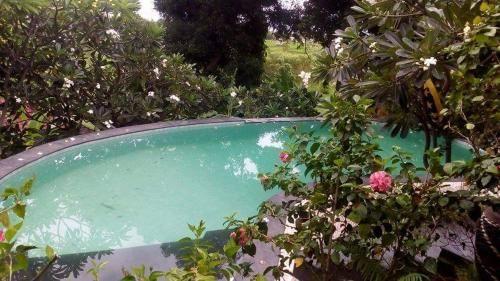 Villa Ari Lumpur, Buleleng