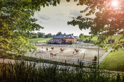 Hotel Horse Riding - Jezdecky Areal Trsice, Olomouc