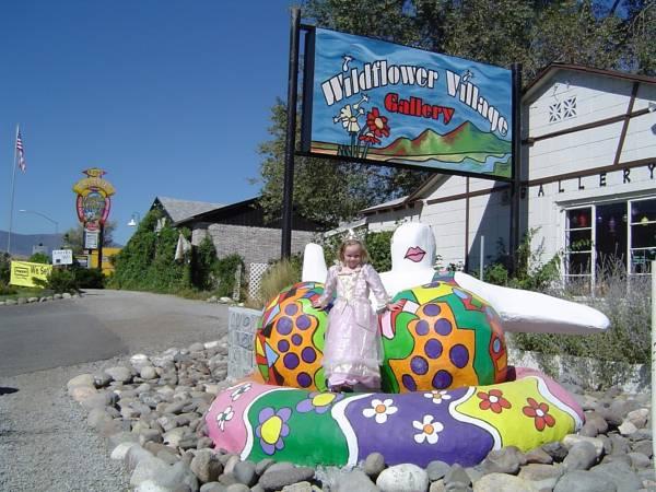 Wildflower Village, Washoe