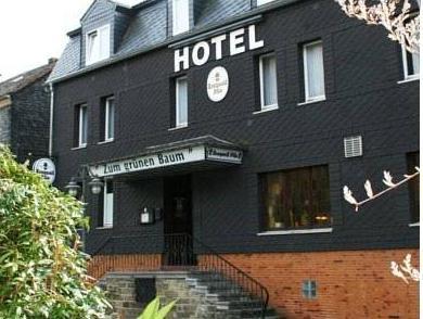 Hotel Zum grünen Baum, Altenkirchen (Westerwald)