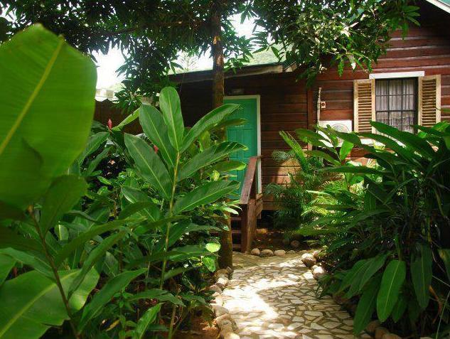 JJ's Paradise Resort,