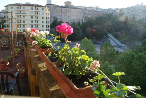 Alla Residenza Domus Minervae, Perugia