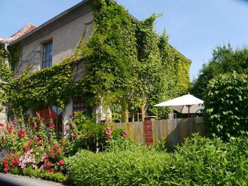 Haus Vincent Stralsund, Vorpommern-Rügen