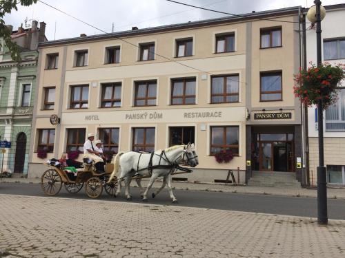 Hotel Pansky dum, Plzeň - jih