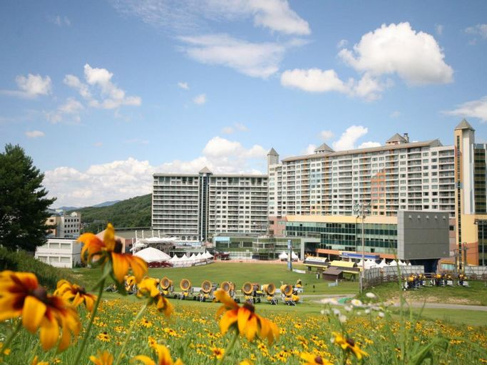 Welli Hilli Park Resort, Hoengseong
