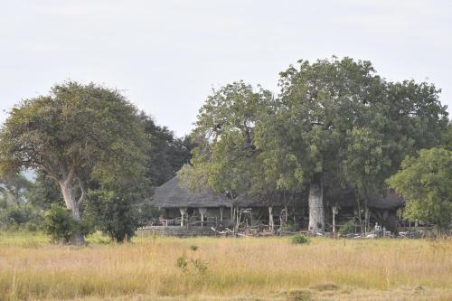 Mikumi Wildlife Camp, Kilosa