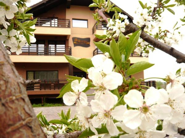 Margo Lounge & Business Resort, Hemeius