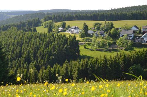 Ferienhaus zur Glocke, Hochsauerlandkreis