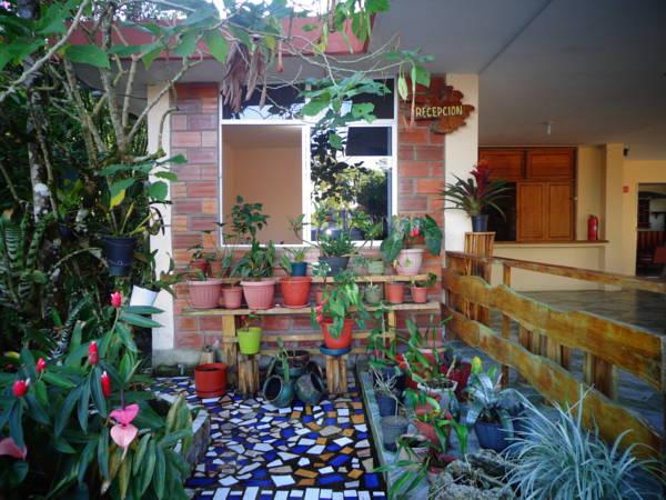 Bromelias Amazon Lodge, Archidona