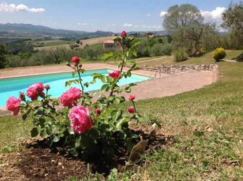 Agriturismo Acquaviva Todi, Perugia