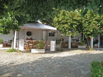 Holiday Home Casal Sancho/Santar, Nelas