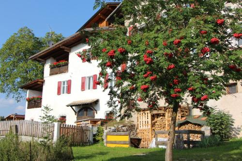 Casa Pioncla Apartments, Trento