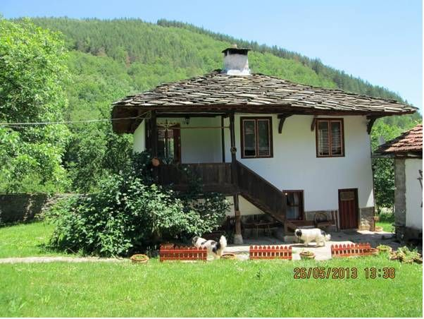 Guest House Four Pines, Troyan