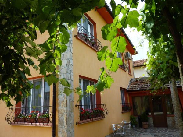 Villa Gamma, Pavel Banya