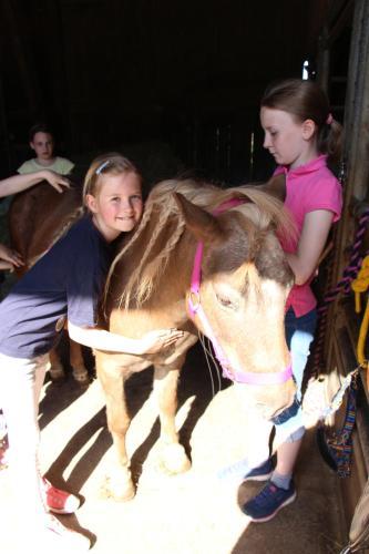 Pony-und Ferienhof Gut Habbecke, Hochsauerlandkreis
