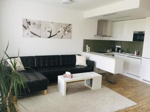 Apartment Husova, Nymburk