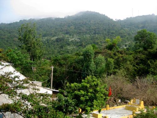 Tam Hien Cu Lao Cham Homestay, Hội An