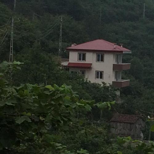 Zazana Mountain House, Arsin