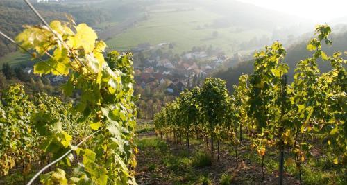 Weingut Hees - Landgasthof Zum Jager aus Kurpfalz, Bad Kreuznach