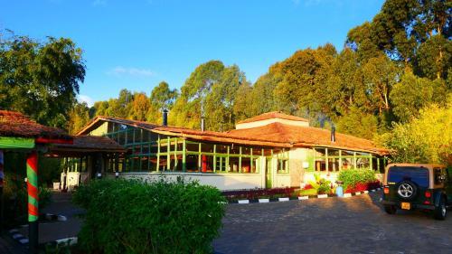 Le Bambou Gorilla Lodge, Musanze