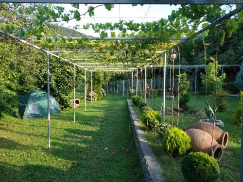 Guest House Gardenia & Wine Cellar, Lagodekhi