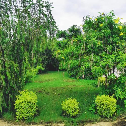 Spendwise Lodge & Apartments, TA Kapeni